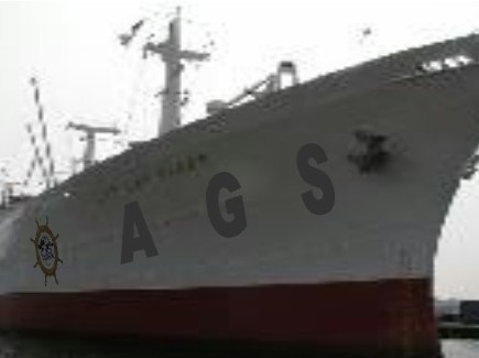 AGS Global Freight Inc - AGS GLOBAL FREIGHT